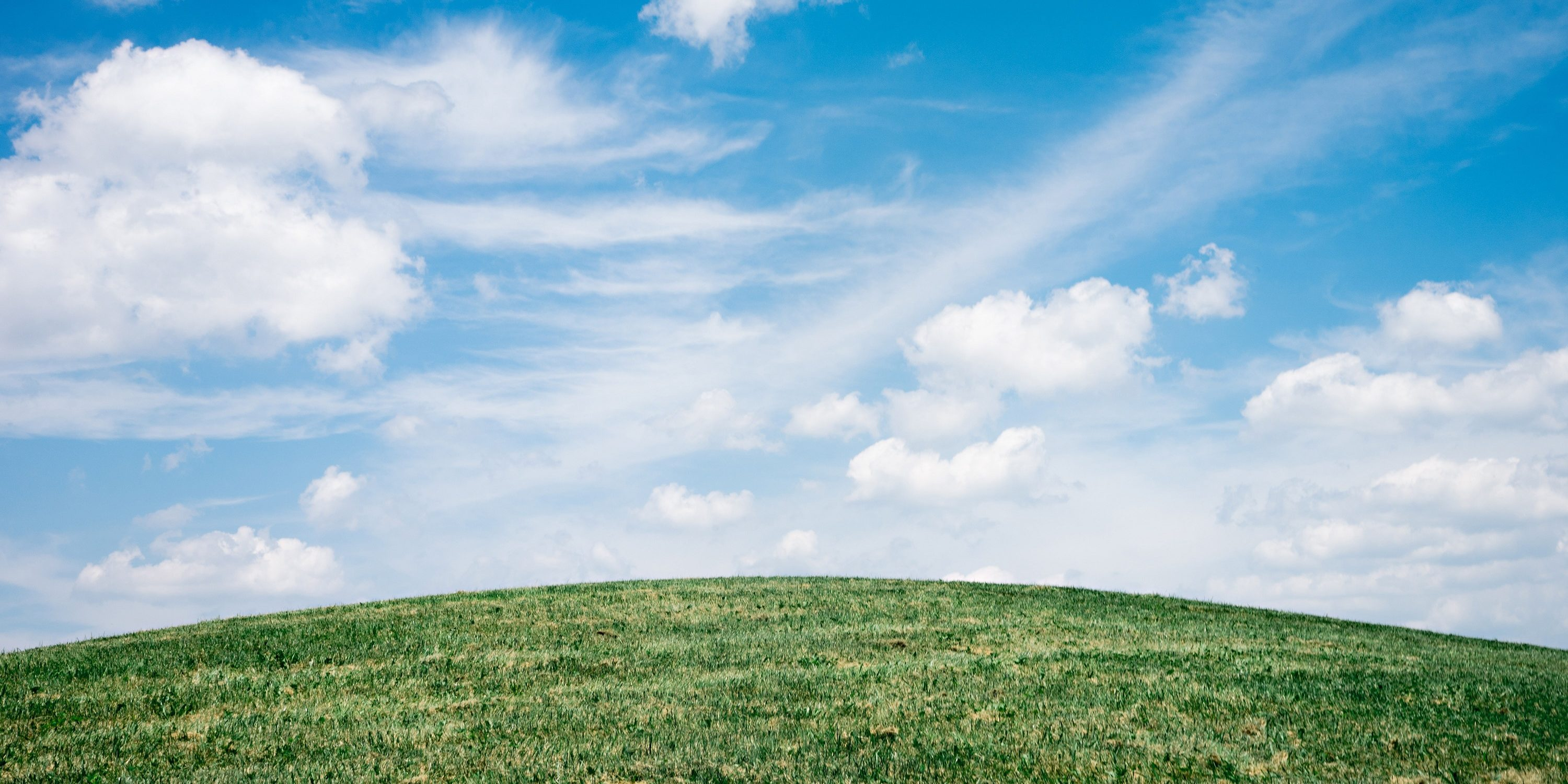 Should your Accreditation Management Software be Cloud-Based